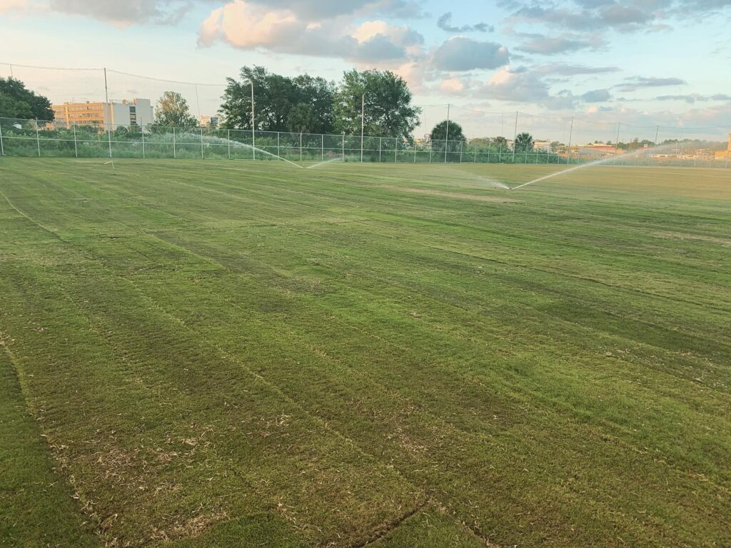 image of sprinklers spraying on recently completed natural grass soccer field