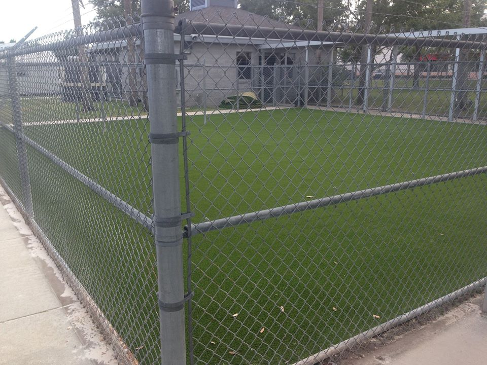 image of turf field inside of fenced enclosure