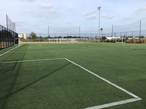 synthetic soccer field; green synthetic grass with white painted lines